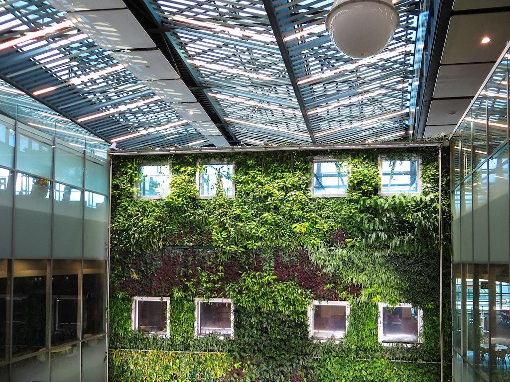 architectural-design-ceiling-construction-1188834